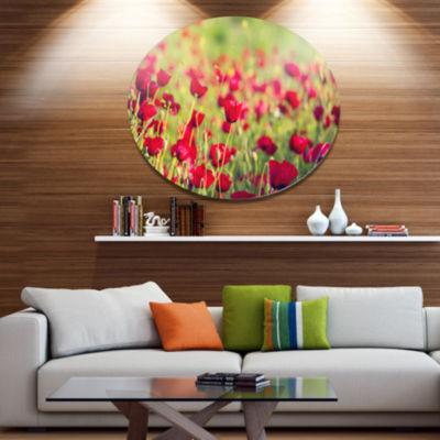 Designart Beautiful Poppy Flowers Background LargeFlower Oversized Metal Circle Wall Art
