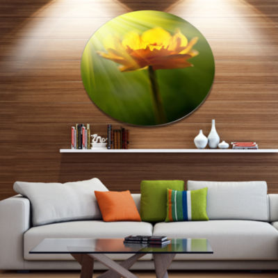 Designart Large Yellow Flower in Spotlight Large Flower Oversized Metal Circle Wall Art