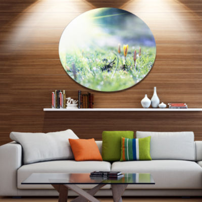 Designart Beautiful First Spring Flowers At Dawn Floral Oversized Metal Circle Wall Art