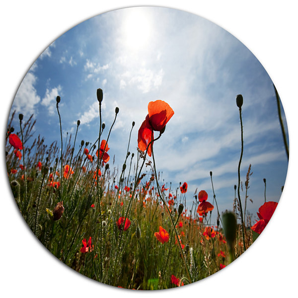 Designart Poppy Flower Field View From Ground Floral Oversized Metal Circle Wall Art