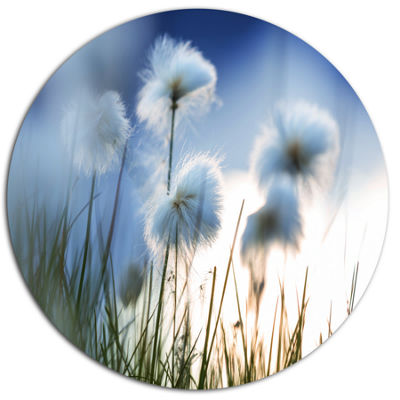 Designart Beautiful Polar White Flowers Floral Oversized Metal Circle Wall Art