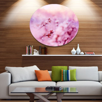 Designart Close Up View of Blossoming Cherry Floral Oversized Metal Circle Wall Art