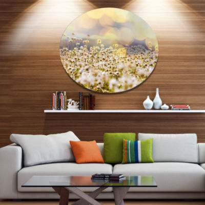 Designart Beautiful Chamomiles Field Oversized Landscape Metal Circle Wall Art