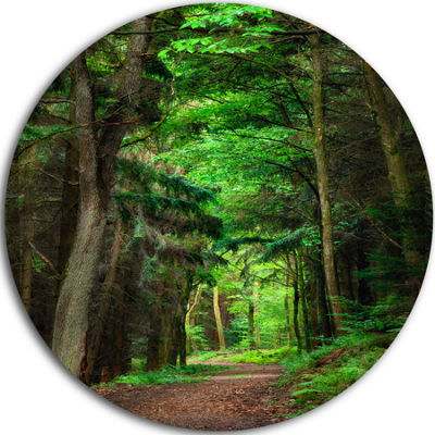 Designart Dreamy Greenery in Dense Forest Forest Metal Circle Wall Art