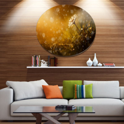 Designart Forest After Rain during Sunset Large Floral Metal Circle Wall Art