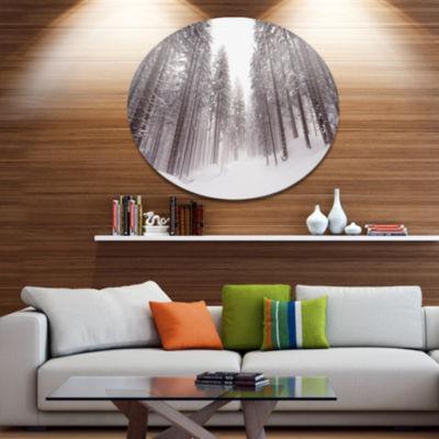 Designart Winter Scenery in Trentino Alto Adige Large Forest Metal Circle Wall Art