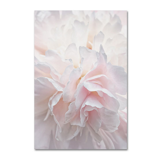 Trademark Fine Art Cora Niele Pink Peony Petals IV Giclee Canvas Art