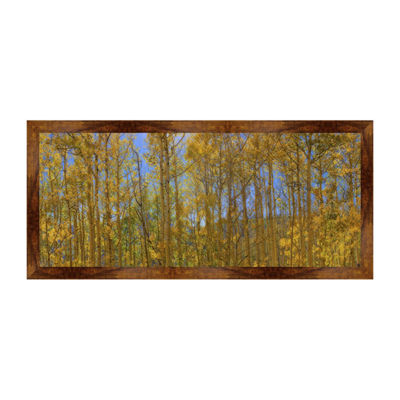 Aspen Trees Framed Canvas Art