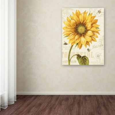 Trademark Fine Art Lisa Audit Under the Sun I Giclee Canvas Art