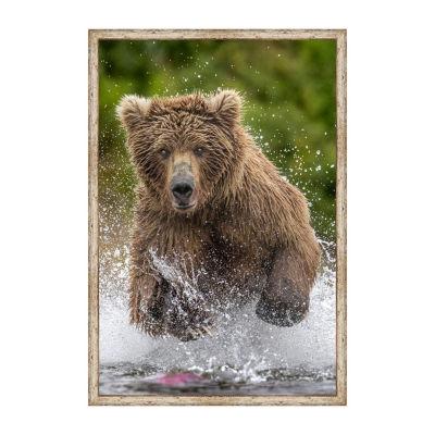 Alaska Bear Framed Canvas Art