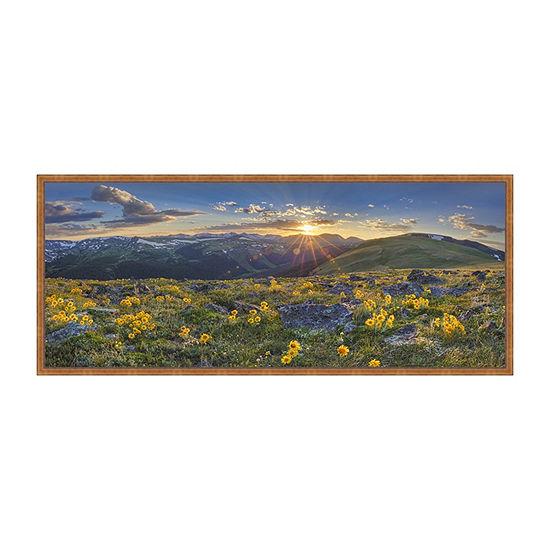 Colorado Sunflower Sunset Panorama 1 Framed CanvasArt