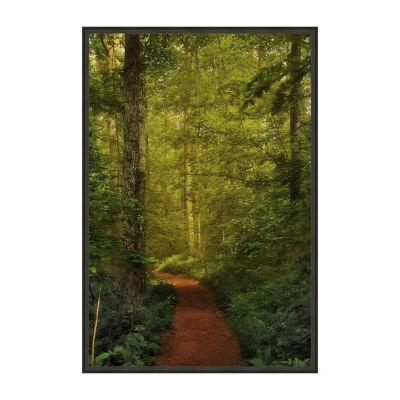 Fairytale Path Framed Canvas Art