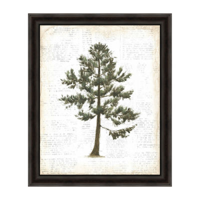 Into The Woods Trees I Framed Canvas Art