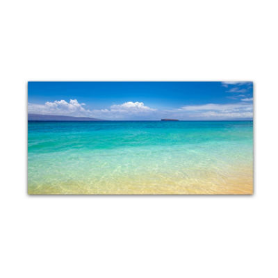 Trademark Fine Art Pierre Leclerc Blue Beach MauiGiclee Canvas Art
