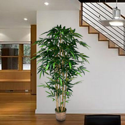 72 Inch Tall Bamboo Tree In Bamboo Wicker Planter