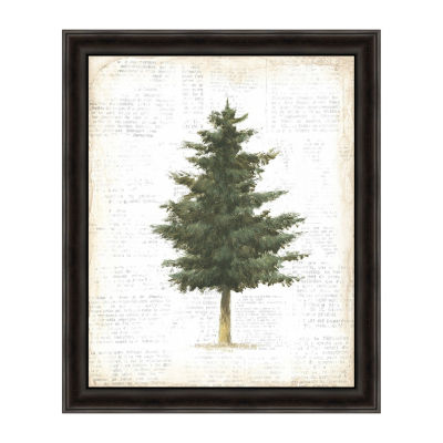 Into The Woods Trees II Framed Canvas Art