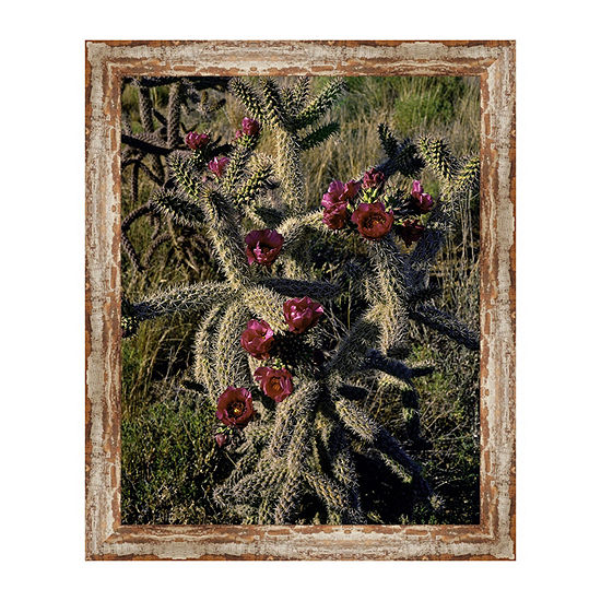 Cholla Cactus Framed Canvas Art