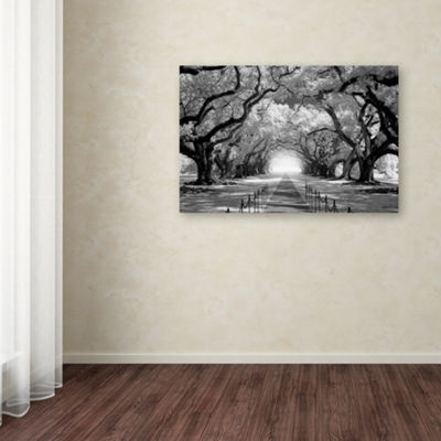 Trademark Fine Art Mike Jones Photo Oak Alley infCHECK Giclee Canvas Art