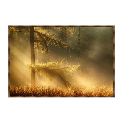 Autumn Light Framed Canvas Art