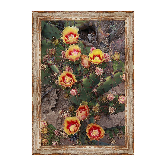 Comanche Prickly Pear Framed Canvas Art