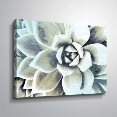 Brushstone Blue Succulent Gallery Wrapped Canvas
