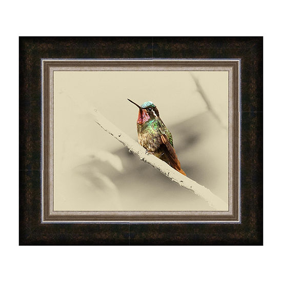Mountain Gem Male Framed Canvas Art