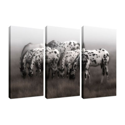 Appaloosa Triptych Framed Canvas Art