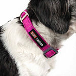 Dog Helios Easy-Tension Sporty Durable Pet Dog Leash And Collar