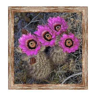 Chisos Hedgehog Cactus Framed Canvas Art