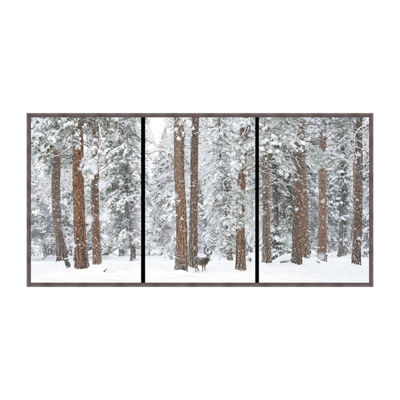 Babe In The Woods-Triptych Framed Canvas Art