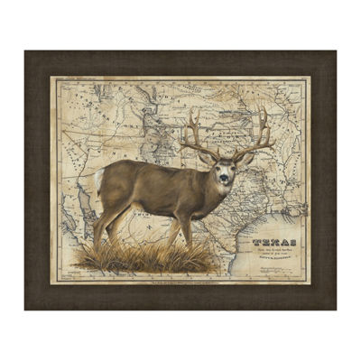Mule Deer Framed Canvas Art