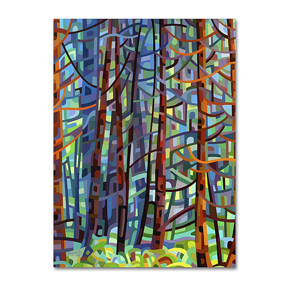 Trademark Fine Art Mandy Budan In A Pine Forest Giclee Canvas Art