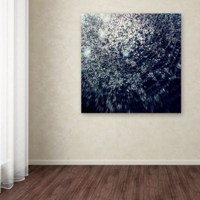 Trademark Fine Art Beata Czyzowska Young 50 Shapesof Joy Giclee Canvas Art