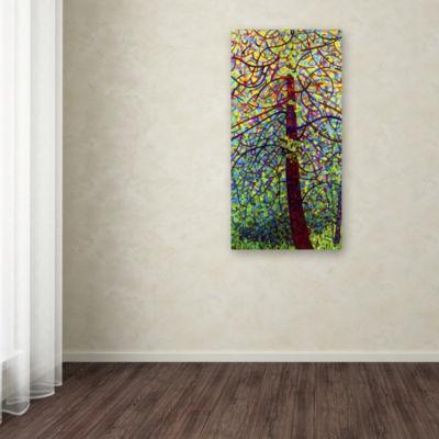 Trademark Fine Art Mandy Budan Kaleidoscope GicleeCanvas Art