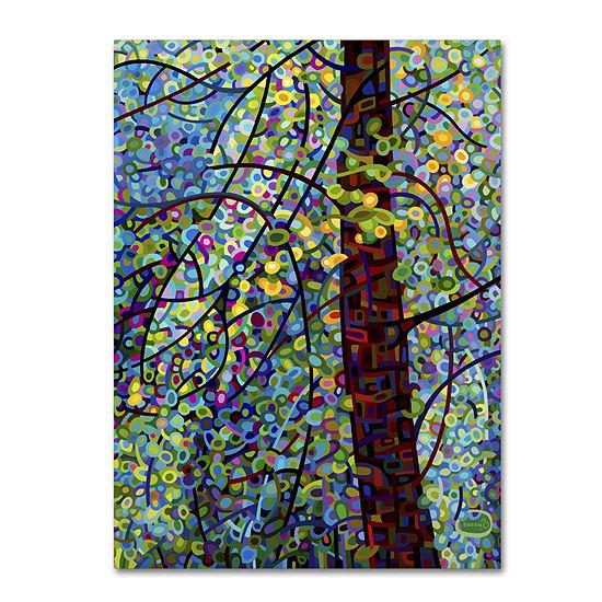 Trademark Fine Art Mandy Budan Pine Sprites Giclee Canvas Art