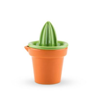 Prickly Cactus™ Citrus Juicer
