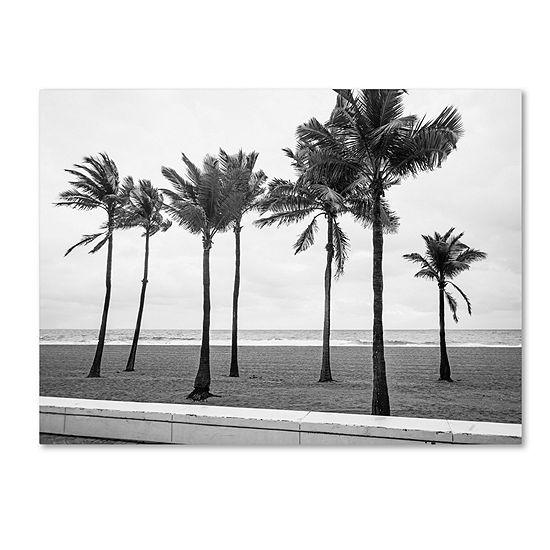 Trademark Fine Art Preston Florida BW Beach Palms Giclee Canvas Art