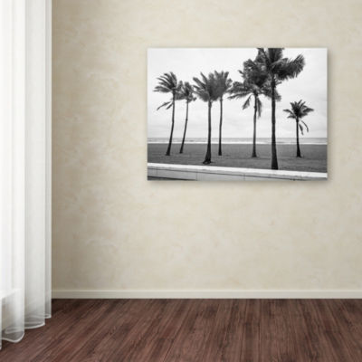 Trademark Fine Art Preston Florida BW Beach PalmsGiclee Canvas Art