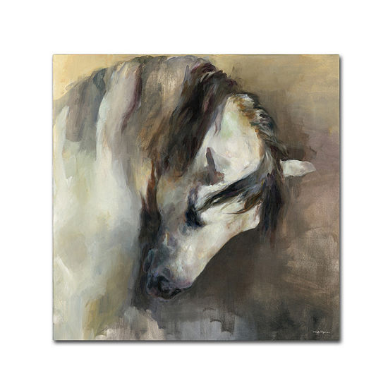 Trademark Fine Art Marilyn Hageman Classical HorseGiclee Canvas Art