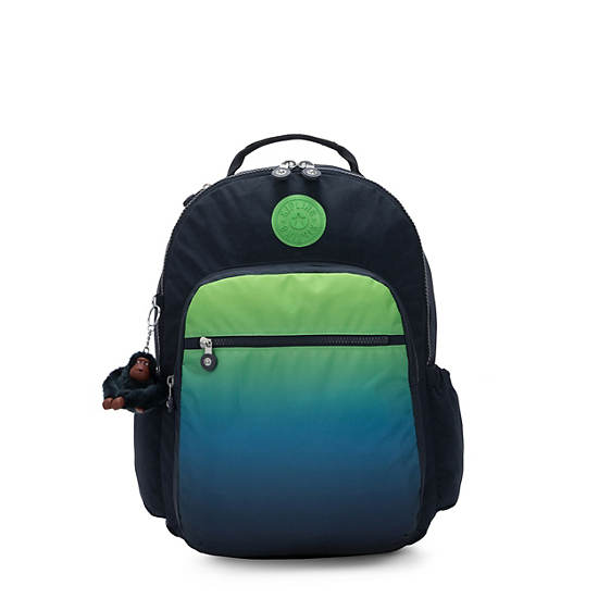 Seoul Go Large Ombre Printed Laptop Backpack,Washed Lines MX,large