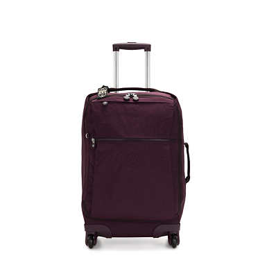 Darcey Small Carry-On Rolling Luggage - Dark Plum