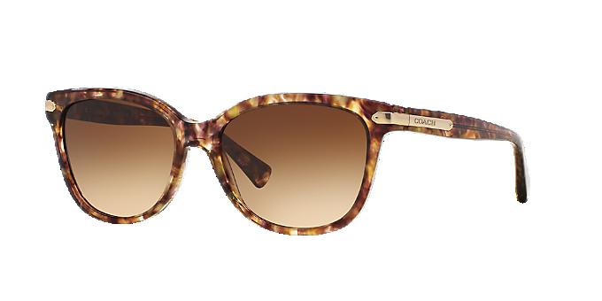 1f4a69b448 HC8132 57 L109  Shop Coach Brown Tan Cat Eye Sunglasses at LensCrafters
