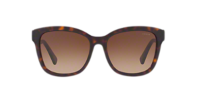 Image for HC8219 56 L1656 from Eyewear: Glasses, Frames, Sunglasses & More at LensCrafters