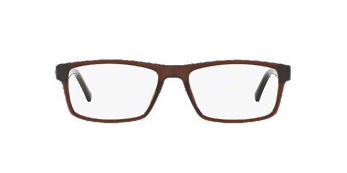 Imagen para SF1149 de espejuelos: espejuelos, monturas, gafas de sol y más en LensCrafters