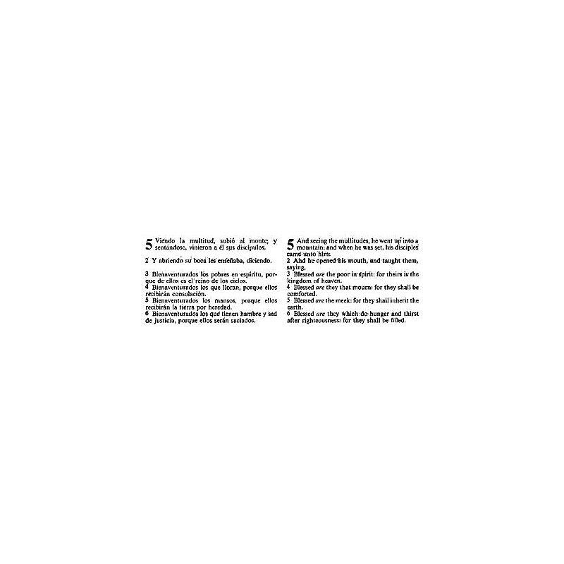 RVR 1960/KJV Biblia Bilingüe, negro piel fabricada con índice