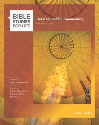 Bible Studies for Life Adults Commentaries