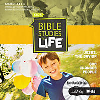 Bible Studies for Life Enhanced CD