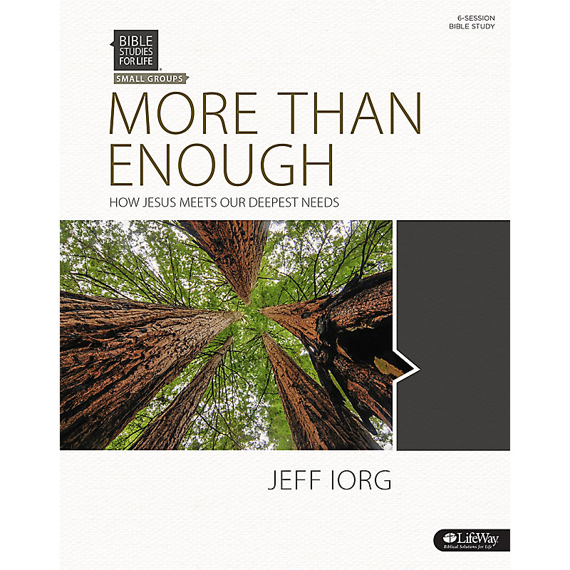 Bible Studies for Life: More Than Enough: How Jesus Meets Our Deepest Needs - Bible Study Book