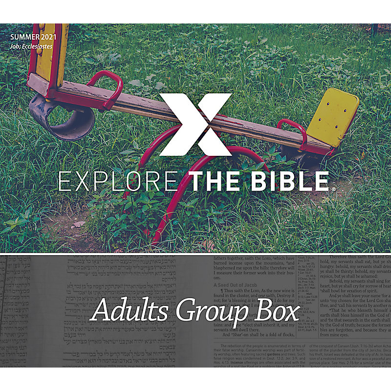 Explore the Bible: Adults Group Box - Summer 2021