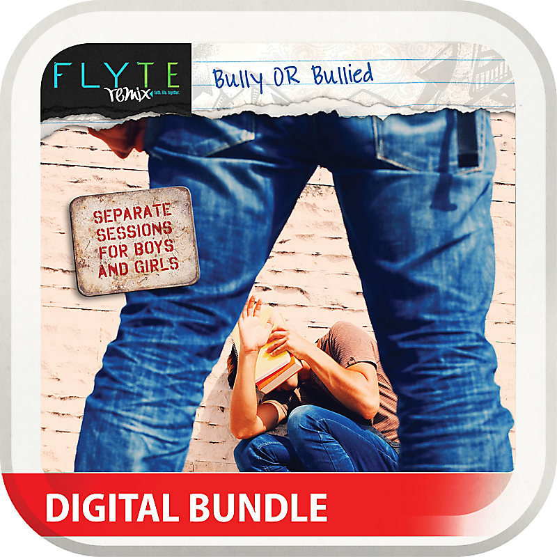 FLYTE remix: Bully or Bullied? Digital Edition